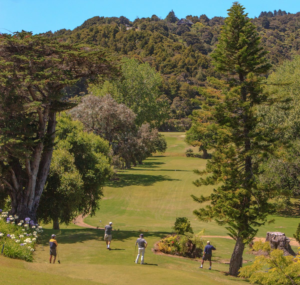 pines-golf-club-whangarei
